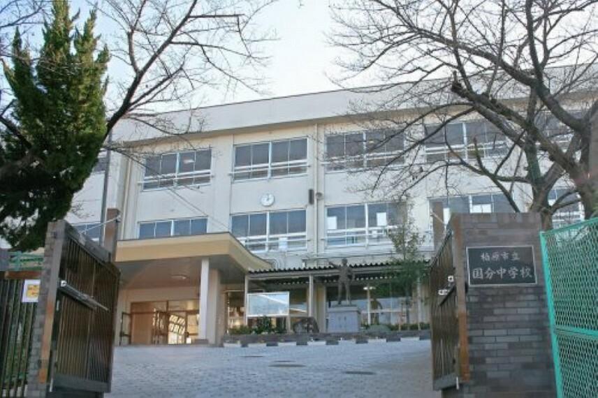 中学校 【中学校】柏原市立国分中学校まで792m
