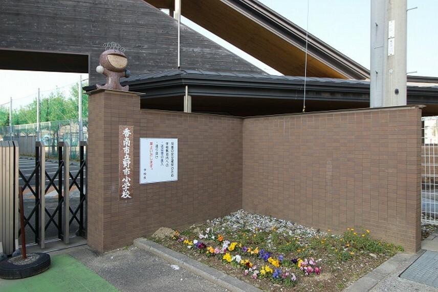 小学校 【小学校】野市小学校まで715m