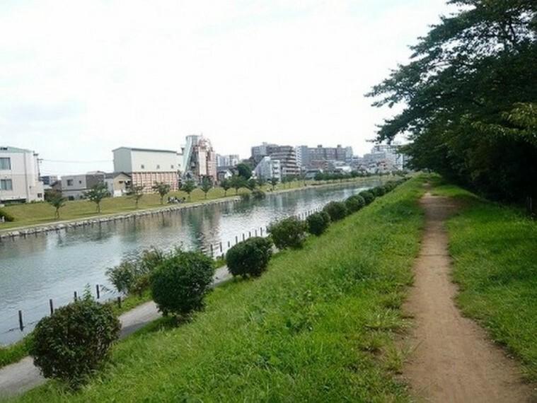 公園 亀戸・大島緑道公園は、春に美しい緑豊かなスポット。約100本ものソメイヨシノが満開になります。