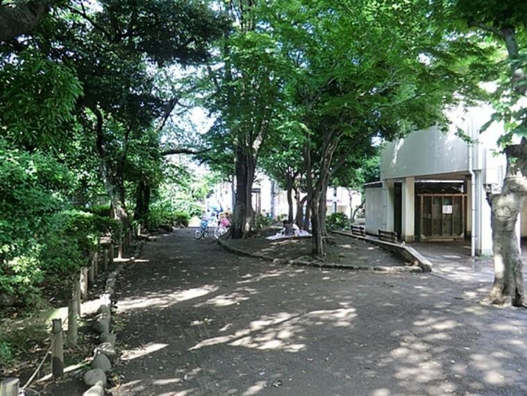 公園 森の公園