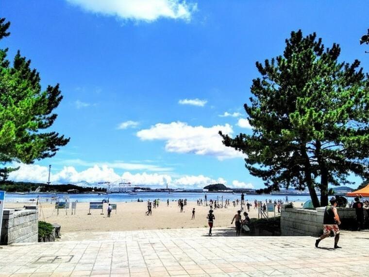 公園 海の公園