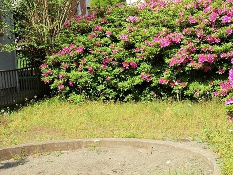 公園 浜之郷第三公園 茅ヶ崎市の住宅街にある遊具もある小さな公園