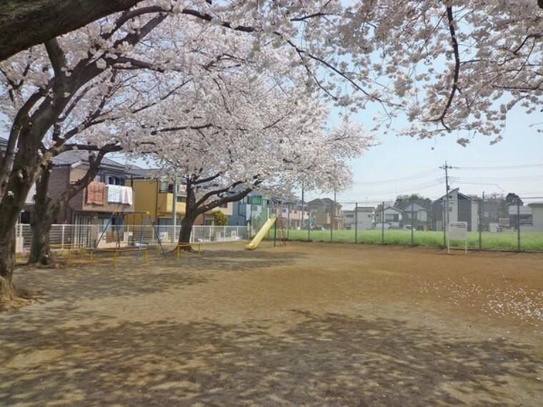 公園 羽沢一丁目多目的広場
