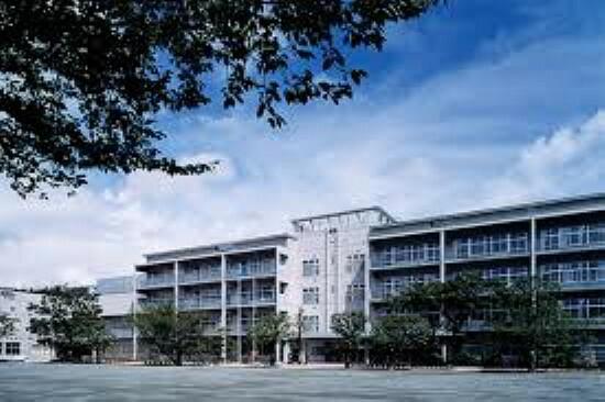 小学校 世田谷区立船橋小学校350m