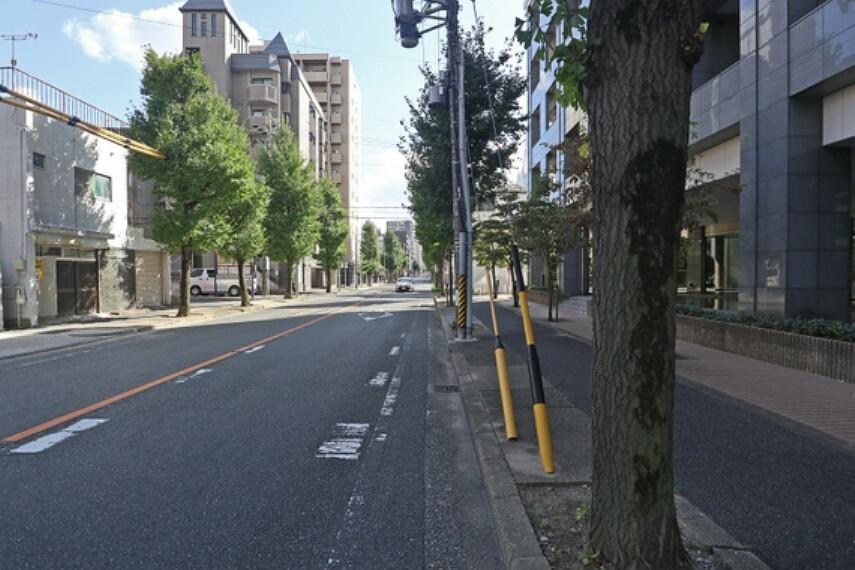 現況写真 敷地の東側前面道路(南側から)