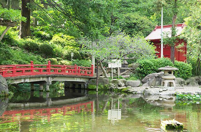 公園 ●須藤公園