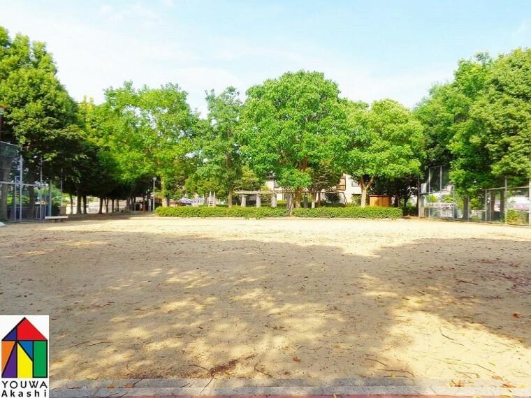 公園 【公園】出合丸山公園まで306m