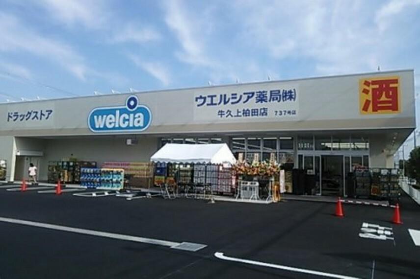ドラッグストア 【ドラッグストア】ウエルシア 牛久上柏田店まで485m