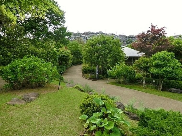 馬場花木園 豊かな緑に囲まれた、和風の風致公園です。 池を中心とした園内には、竹林があるほか、山野草やサクラ、ハス、ウメ、モミジなど四季折々の花々と風情を楽しむことができます。