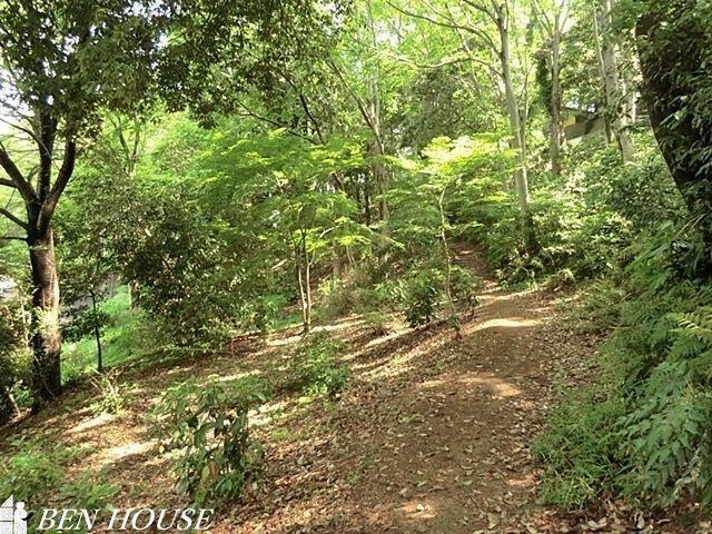公園 白幡公園 徒歩8分。四季の移ろいを身近に感じる緑豊かな住環境です。