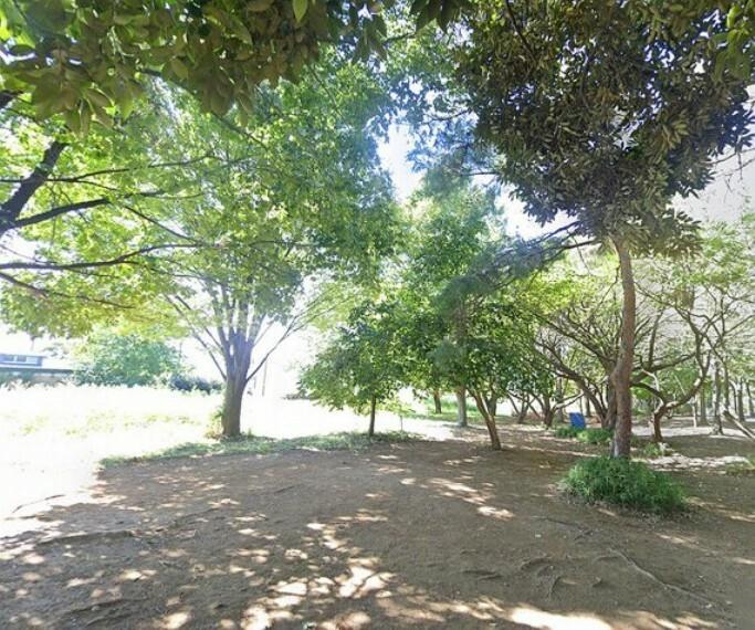 公園 お散歩や運動など様々なアクティビティが楽しめます