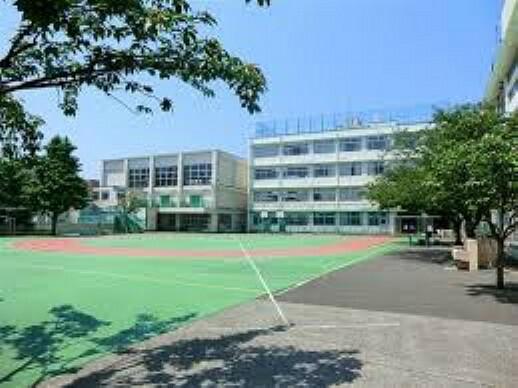 中学校 【中学校】入新井第五小学校まで731m