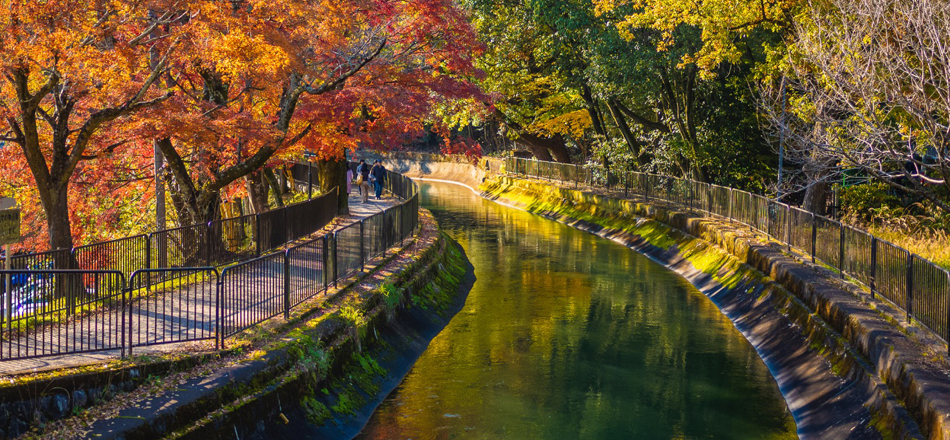 京都 山科 シャリエ