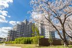 グランリビオ高見七条 桜の杜