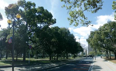 ザ・パークハウス 広島平和公園